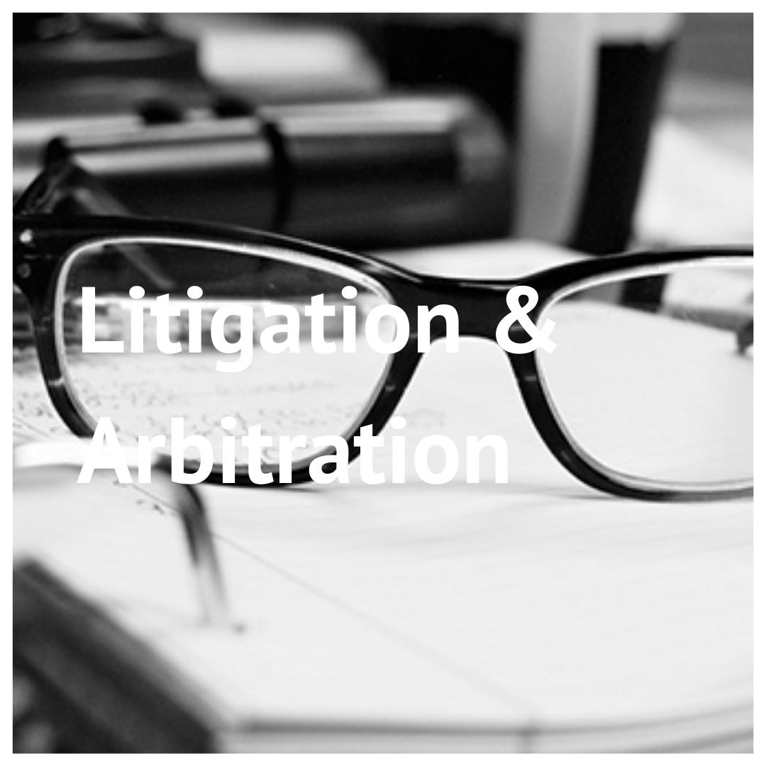 litigation - Home